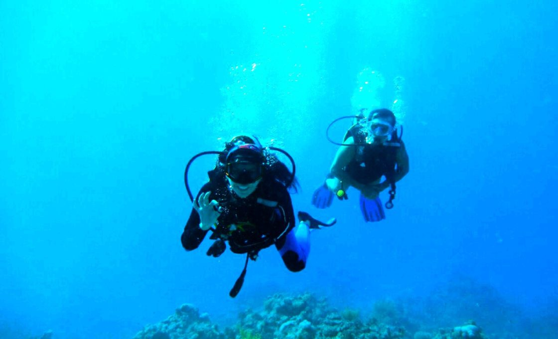 Sharm El-Şeyh Dalış