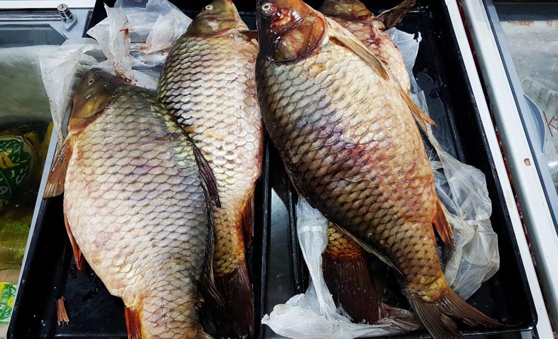 Nahçıvan, Marketteki balıklar