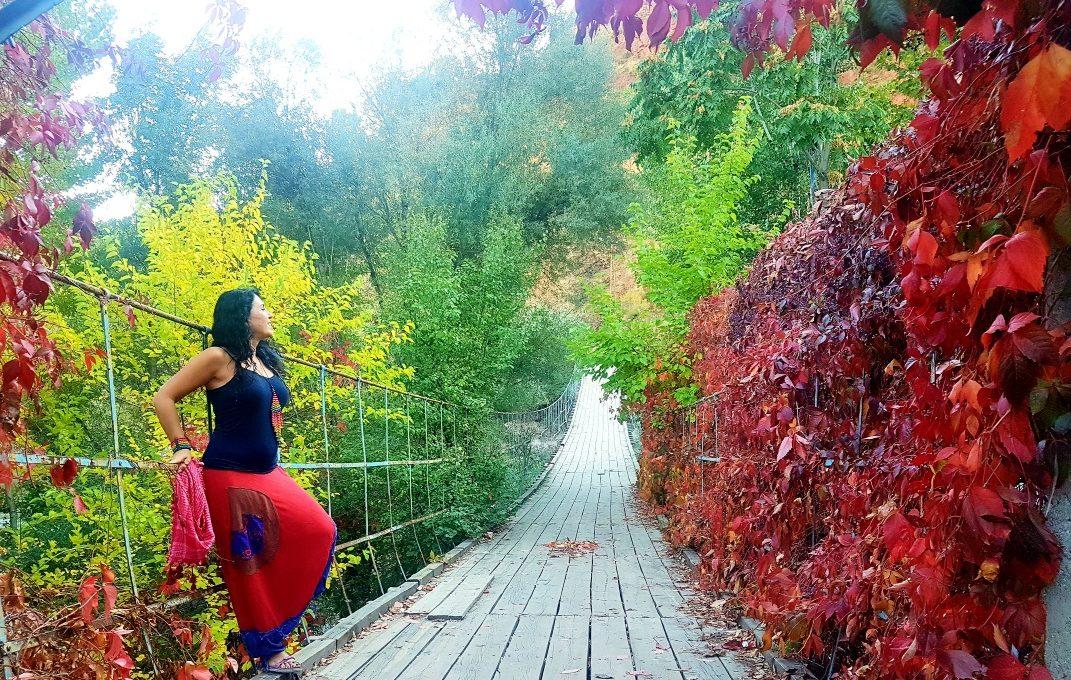Tunceli asma köprü