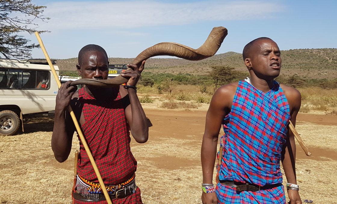Masai Mara boynuzdan çalgı
