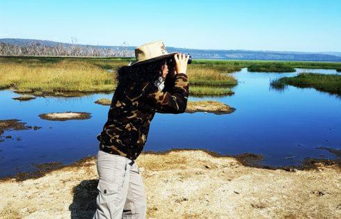 Lake View Estate, safari