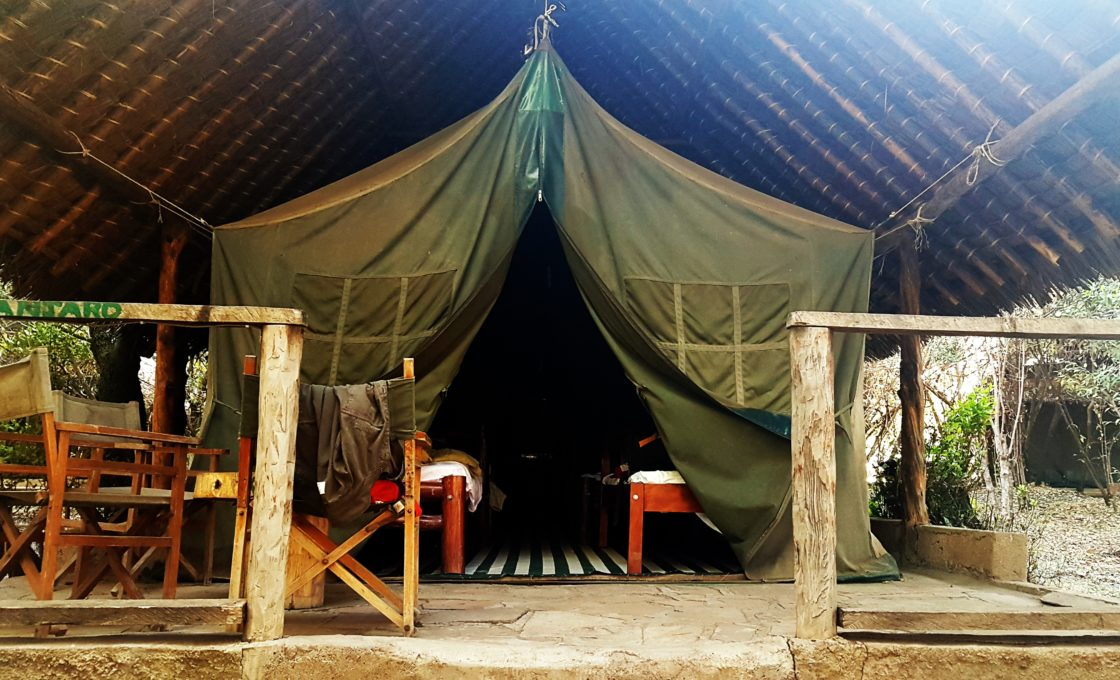 Kilimanjaro eteklerinde ki çadırımız