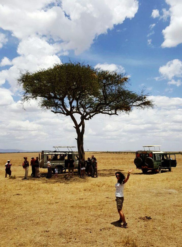 Masai Mara'da öğle yemeği