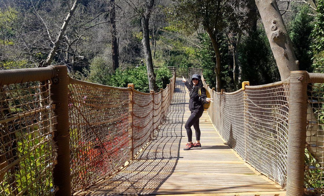 Yıldız Parkı Asma Köprü