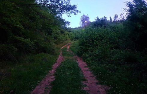 Ayvaini Mağarası yolu