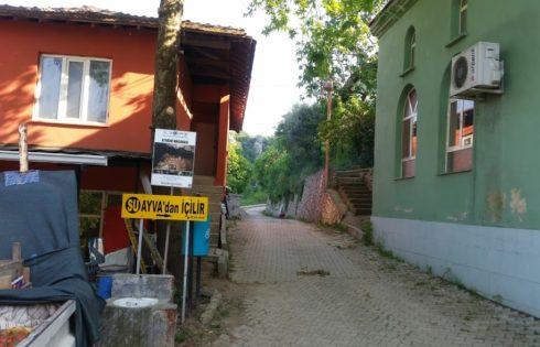 Ayva Köyü