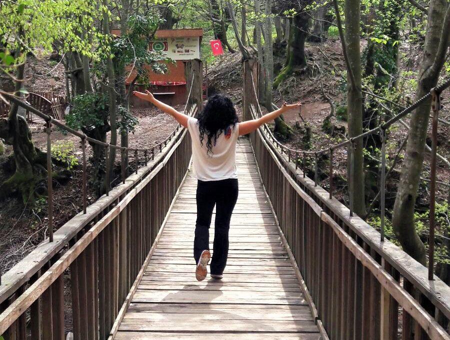 Erikli Çifte Şelale Asma köprü